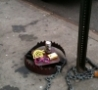 Funny Links - Hipster Trap