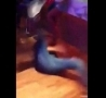 Funny Links - Breakdancer Wallops Hot Chick In Bar