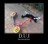 Funny Pictures - D.U.I