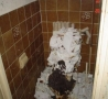 Funny Pictures - A Sh*tty Toilet