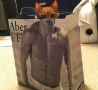 Funny Animals - Abercrombie Cat Is Watching You