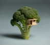 Cool Links - Broccoli House
