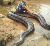 Cool Links - Chilling on a Snake