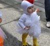 Funny Kids - Cute Chick