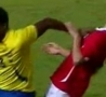 Funny Links - Hey Ref He Punched Me!
