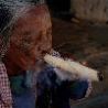 Funny Pictures - Old Lady Stoner