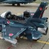 Funny Pictures - Mini Jet Fighter