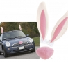 Easter Funny Pictures - Easter Car