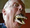 Funny Links - Gator Mouth