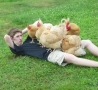 Funny Links - Hanging with Chickens