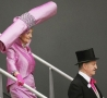 Weird Funny Pictures - Hat or Balancing Act