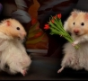 Valentines Pictures - Lovely Hamsters