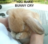 Easter Funny Pictures - Naughty Bunnies