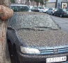 Funny Links - Poopy Car