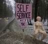 Funny Pictures - Roadside Self Service