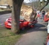 Funny Links - Totally Car Crashed