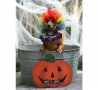 Halloween - Trick or Give Me a Treat