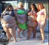 - Wall Of Fat Chicks